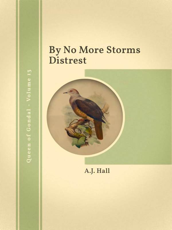 By No More Storms Distrest book cover