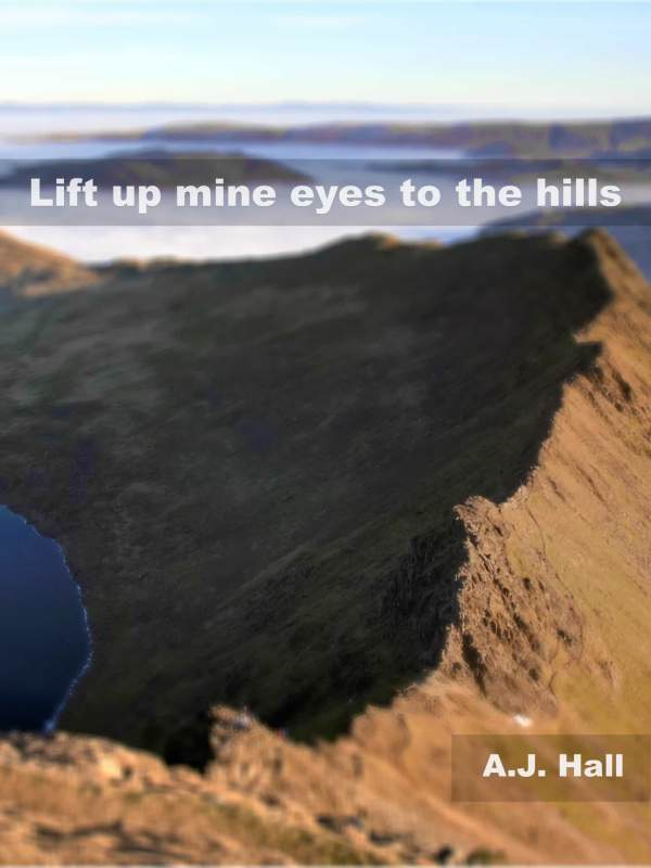 Lift Up Mine Eyes To The Hills book cover