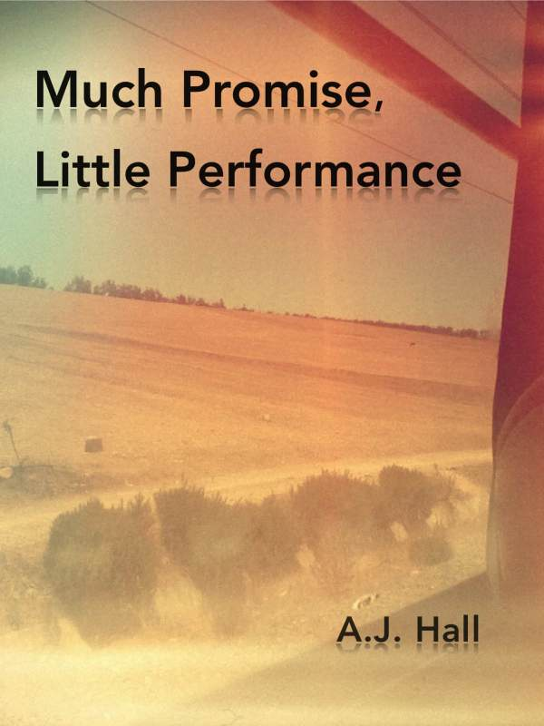 Much Promise, Little Performance book cover