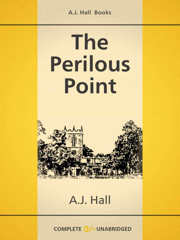 The Perilous Point book cover