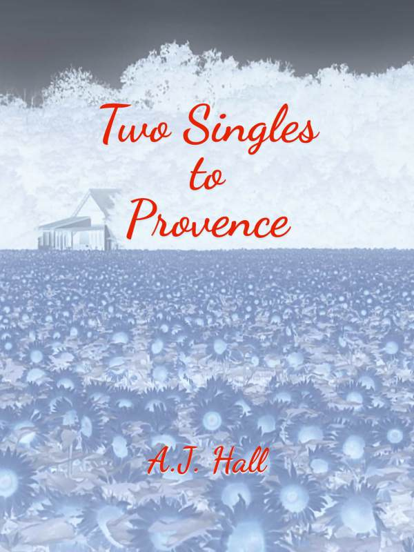 Two Singles to Provence book cover